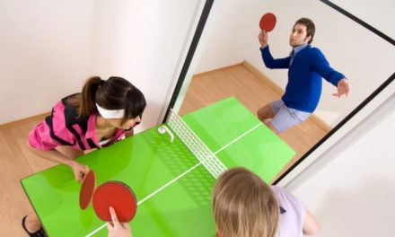 Ping Pong d'appartement – Table Tennis Door