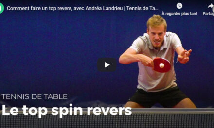 Top Spin Revers